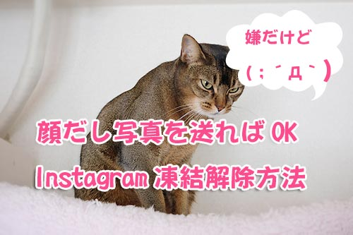 Instagram凍結解除方法