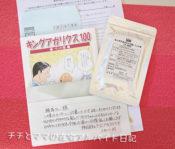 東栄新薬の【キングアガリクス100ペット用】