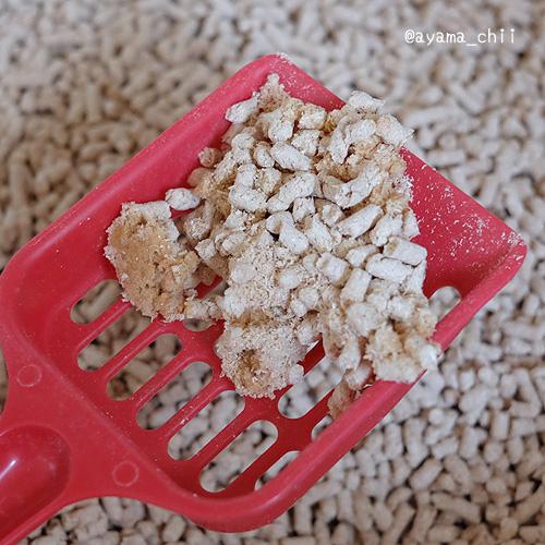 ひのき1週間後の猫砂の固まり具合