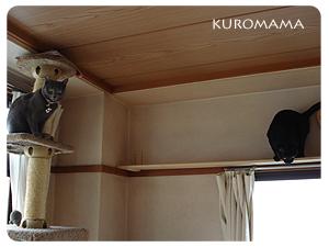 手作り猫のつり橋DIY