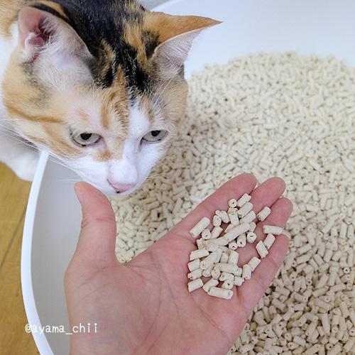 ネオ砂の粒